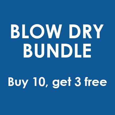 Buy 10 Blow Dries, Get 3 Free - DIRECTOR