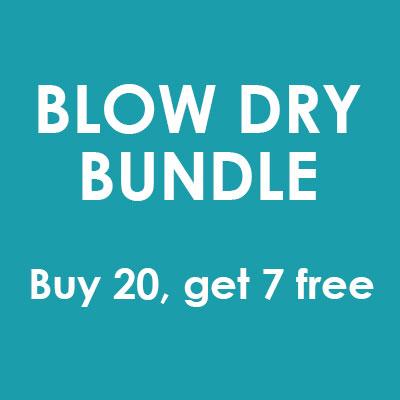 Buy 20 Blow Dries, Get 7 Free - STYLIST
